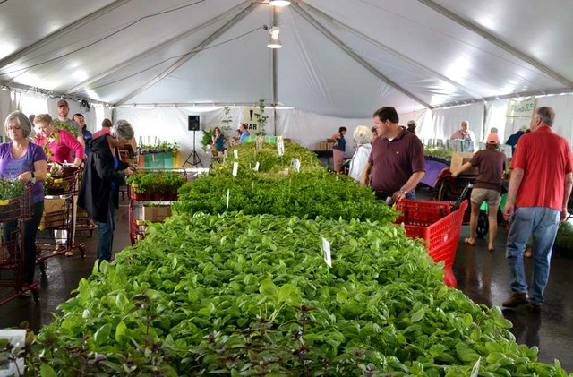 STAR-EVENT-Spring-Plant-Sale.jpg