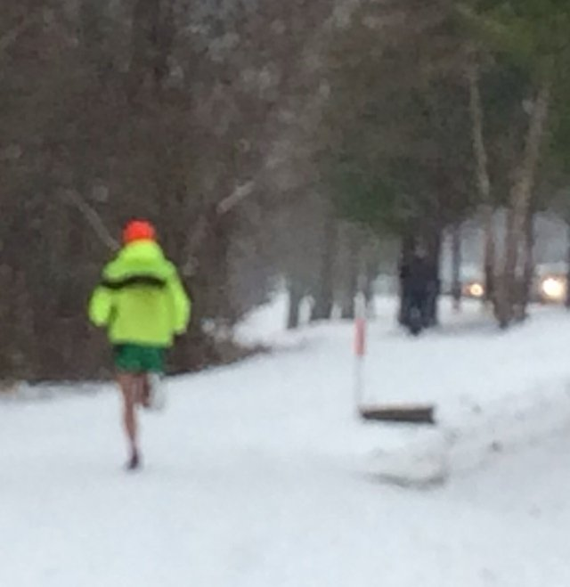Lakeshore Trail runner