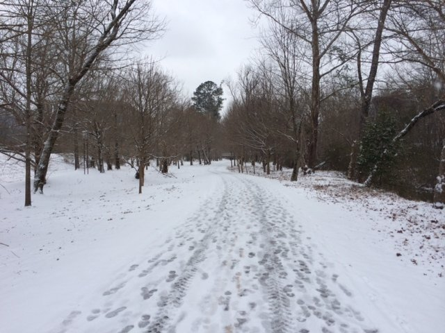 Lakeshore Trail in snow