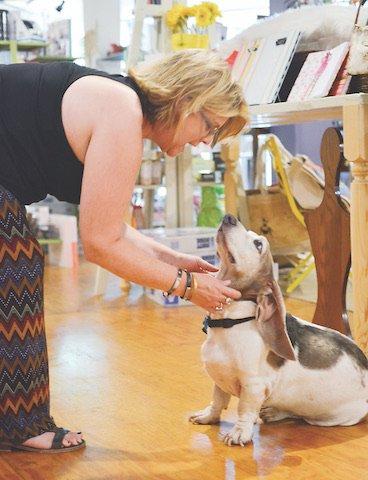 BIZ - Pets At Work_1.jpg