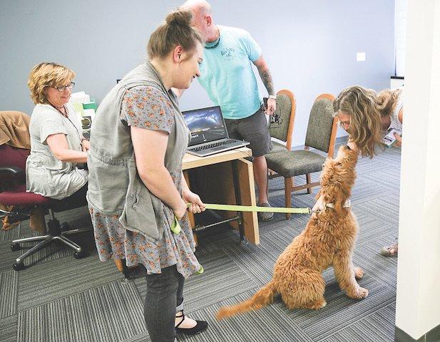 BIZ - Pets At Work_3.jpg