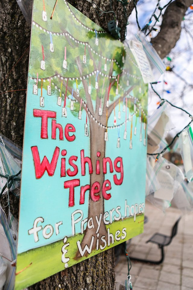 STAR-EVENTS-Wishing-Tree_SNF_8521.jpg