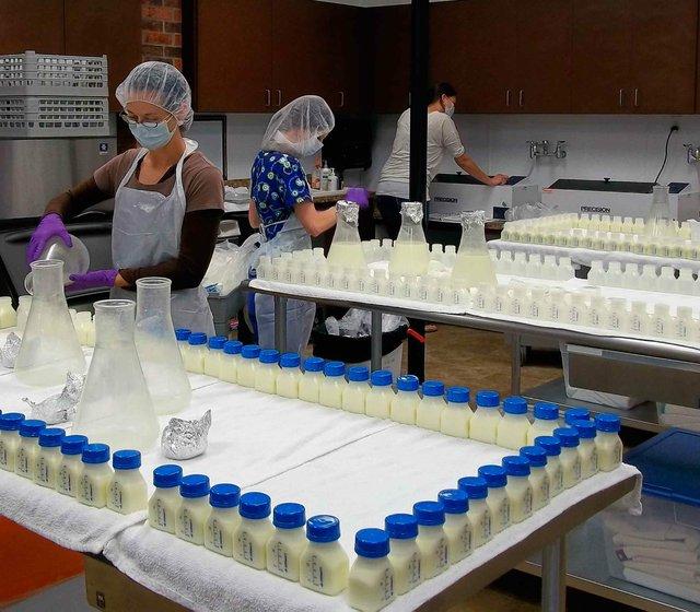 Milk Bank Procesing