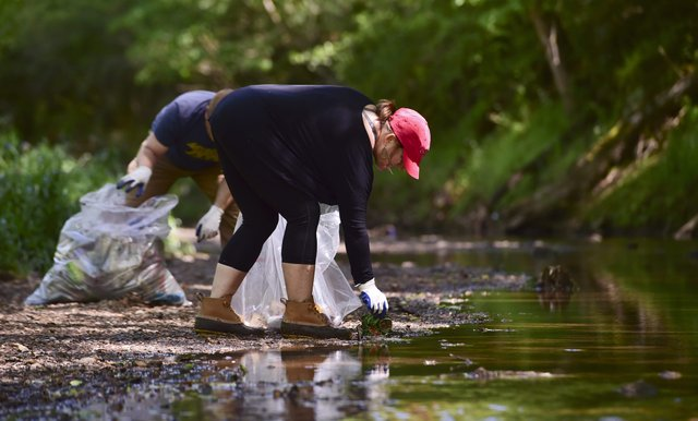 Covid Creek Clean-up