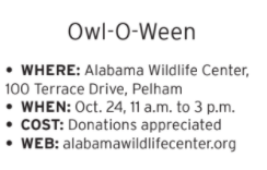 Owl-O-Ween.png
