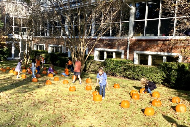 Copy of OLS-School Pumpkin Patch pic1.jpeg