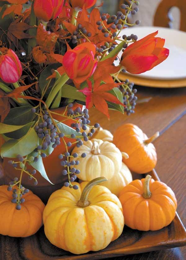 1112 Pumpkin photo