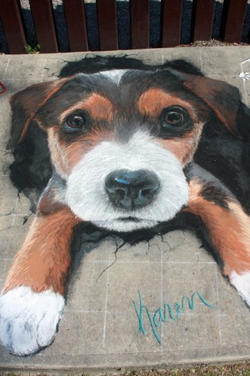 Rotary Sidewalk Chalk Art 2015 Winner