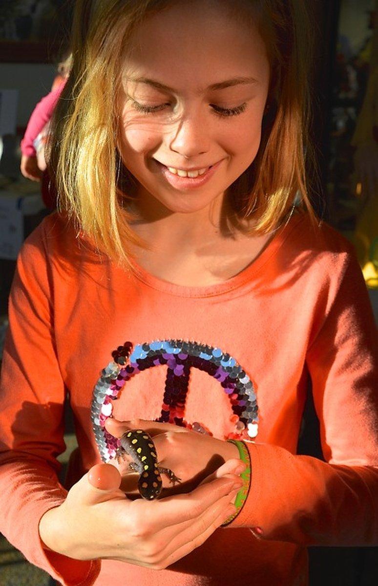 Salamander Festival19.JPG