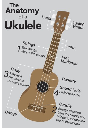 ukulelegraphic.jpg