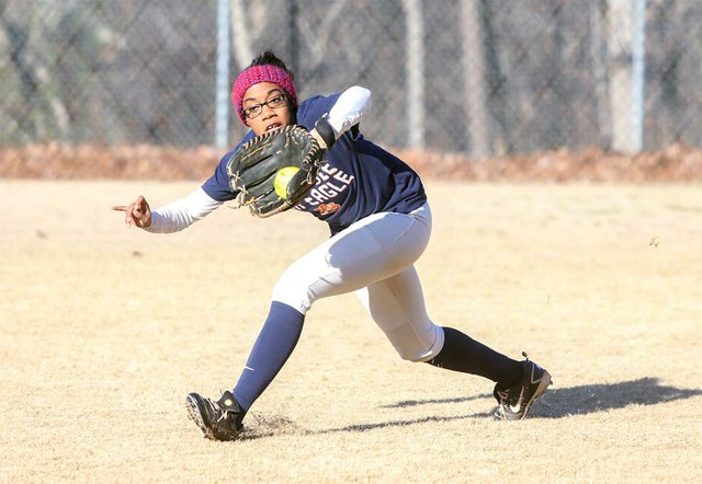 Homewood High School softball